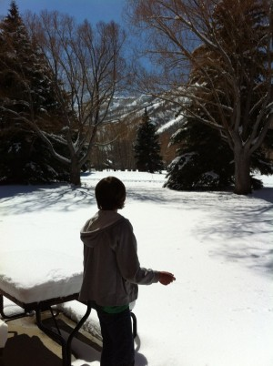 winter wonderings